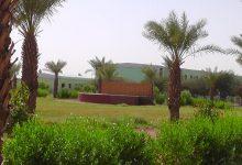 Photo of مركز التميز للبحث العلمي يعقد إجتماعاً لمناقشة ترتيبات المرحلة المقبلة