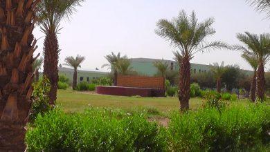 Photo of معسكر طلاب الجيولوجيا جامعة النيلين